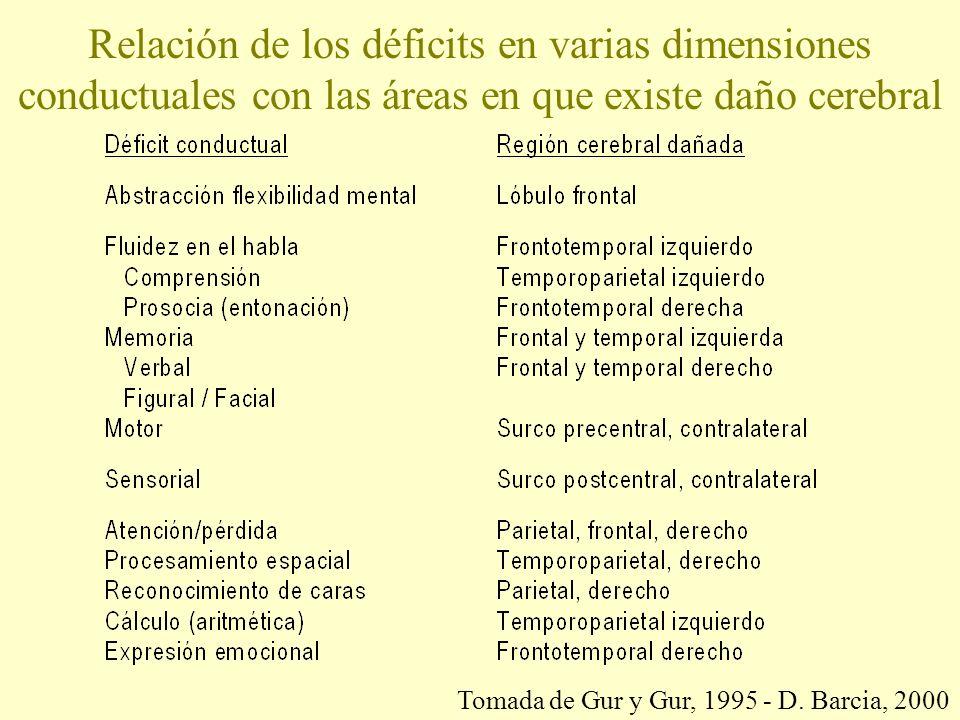 Relación de los déficits en varias dimensiones conductuales con las áreas en que existe daño cerebral Tomada de Gur y Gur, 1995 - D.