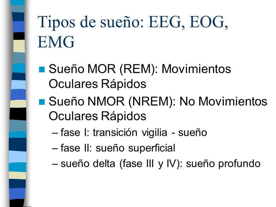 Tipos de sueño: EEG, EOG, EMG Sueño MOR (REM): Movimientos Oculares Rápidos Sueño NMOR (NREM): No Movimientos Oculares Rápidos –fase I: transición vig