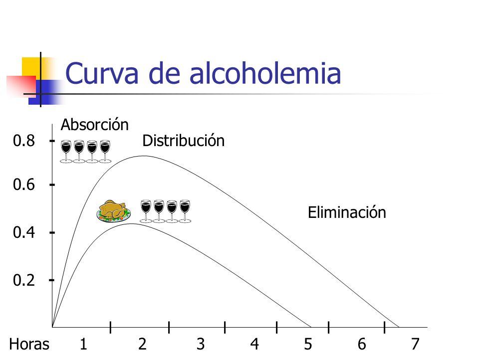 Curva de alcoholemia Horas 1 2 3 4 5 6 7 llllll - - - - 0.2 0.4 0.6 0.8 Absorción Distribución Eliminación