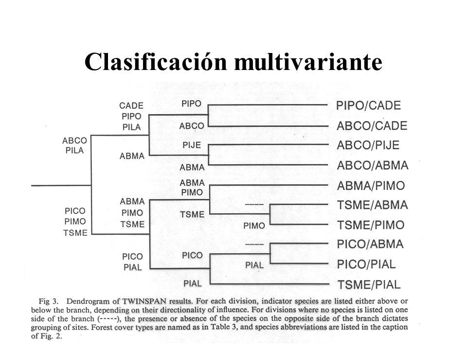 Clasificación multivariante