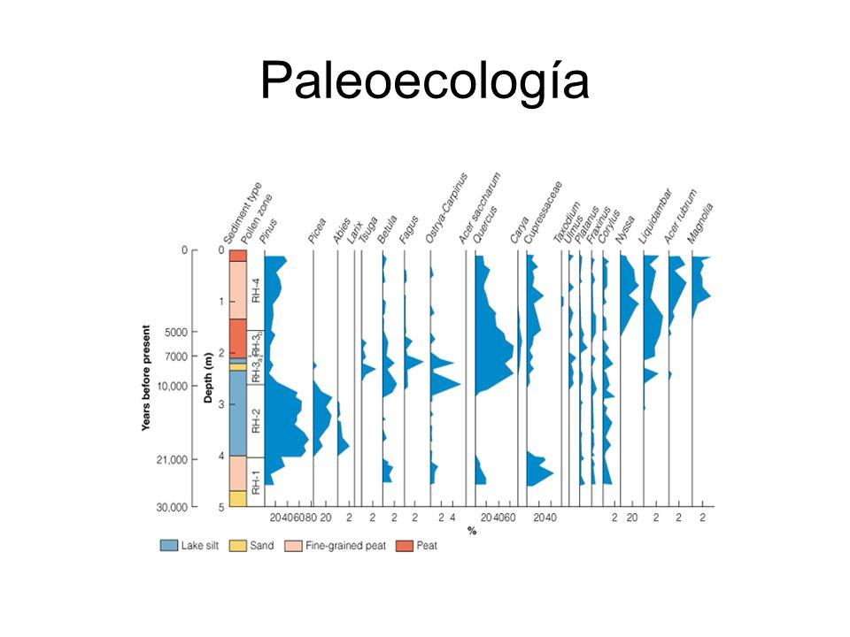 Paleoecología