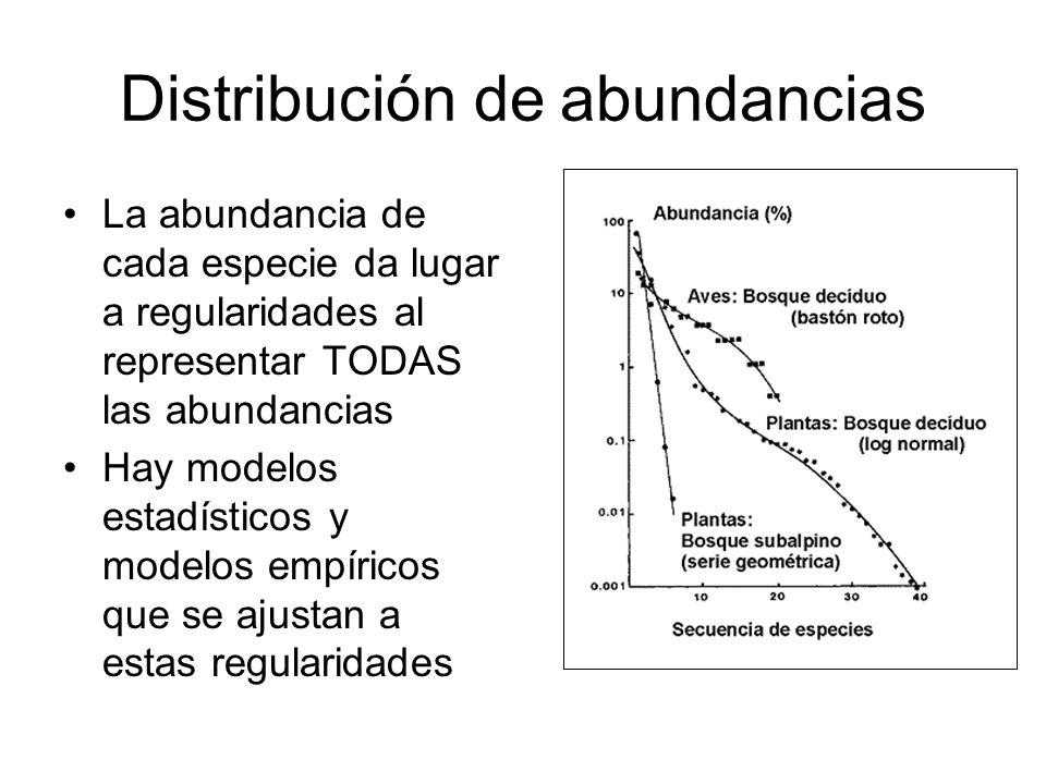 Distribución de abundancias La abundancia de cada especie da lugar a regularidades al representar TODAS las abundancias Hay modelos estadísticos y mod
