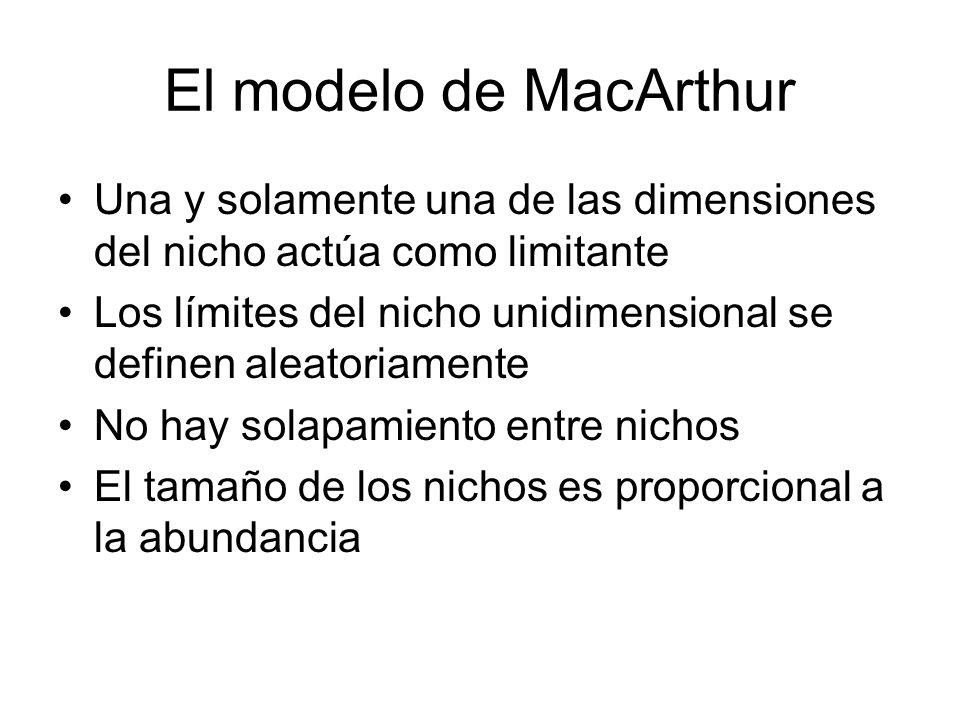 El modelo de MacArthur Una y solamente una de las dimensiones del nicho actúa como limitante Los límites del nicho unidimensional se definen aleatoria