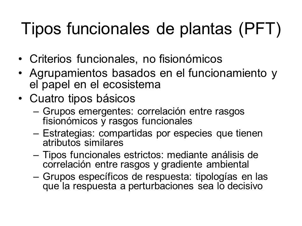 Tipos funcionales de plantas (PFT) Criterios funcionales, no fisionómicos Agrupamientos basados en el funcionamiento y el papel en el ecosistema Cuatr