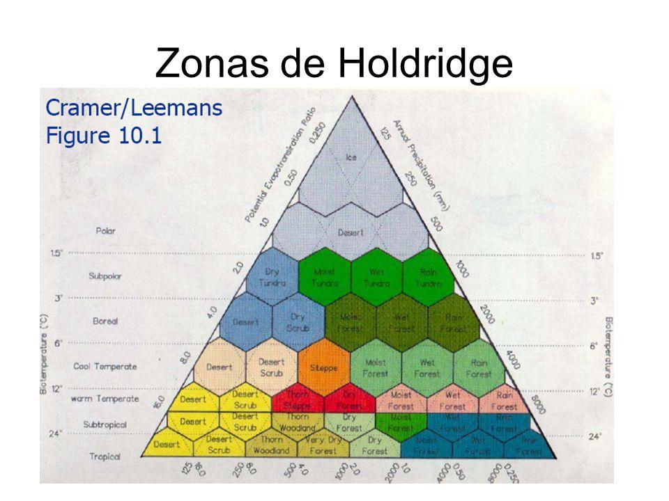 Zonas de Holdridge
