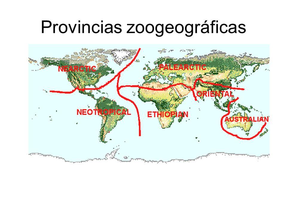 Provincias zoogeográficas
