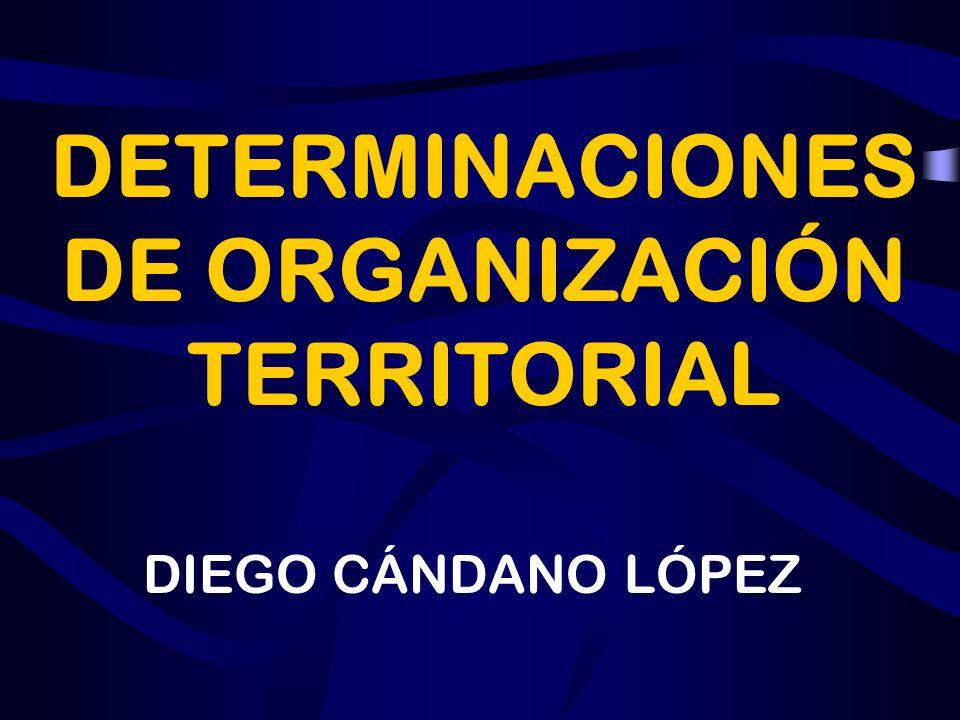 DETERMINACIONES DE ORGANIZACIÓN TERRITORIAL DIEGO CÁNDANO LÓPEZ