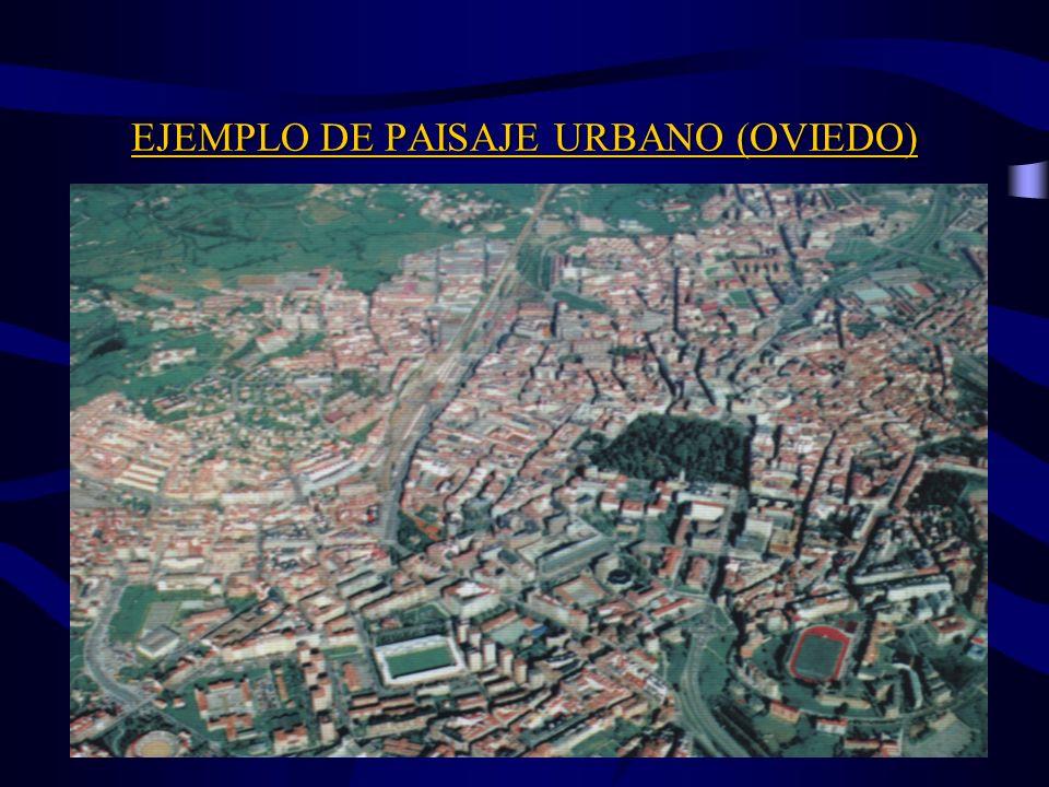 EJEMPLO DE PAISAJE URBANO-INDUSTRIAL (AVILÉS)