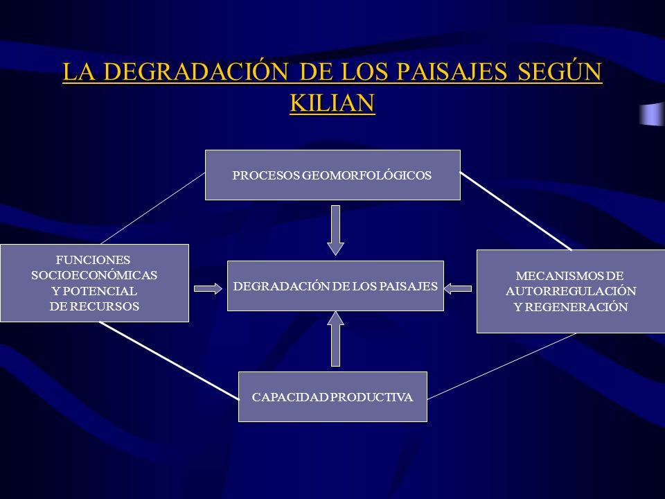 OTROS MÉTODOS DE ANÁLISIS INTEGRADO DE PAISAJE Método de Tricart y Kilian (finales de los 80): Integración Dinámica Ecogeográfica. Sistema GTP (2000).