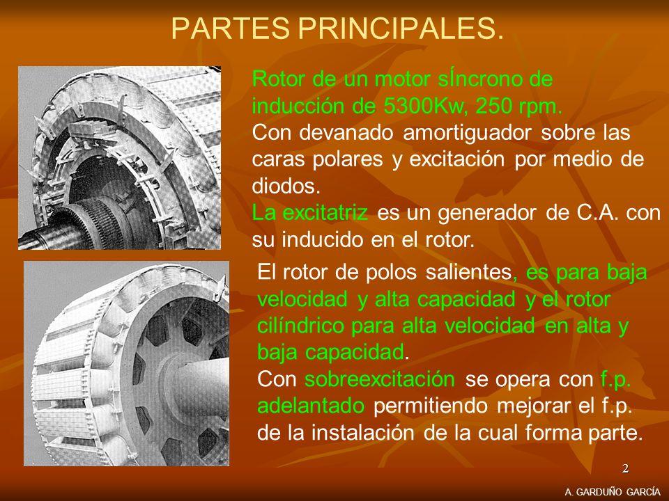 2 PARTES PRINCIPALES. Rotor de un motor sÍncrono de inducción de 5300Kw, 250 rpm. Con devanado amortiguador sobre las caras polares y excitación por m