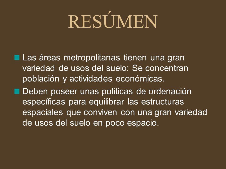 Apartado 3: LAS ÁREAS METROPOLITANAS ESPAÑOLAS: