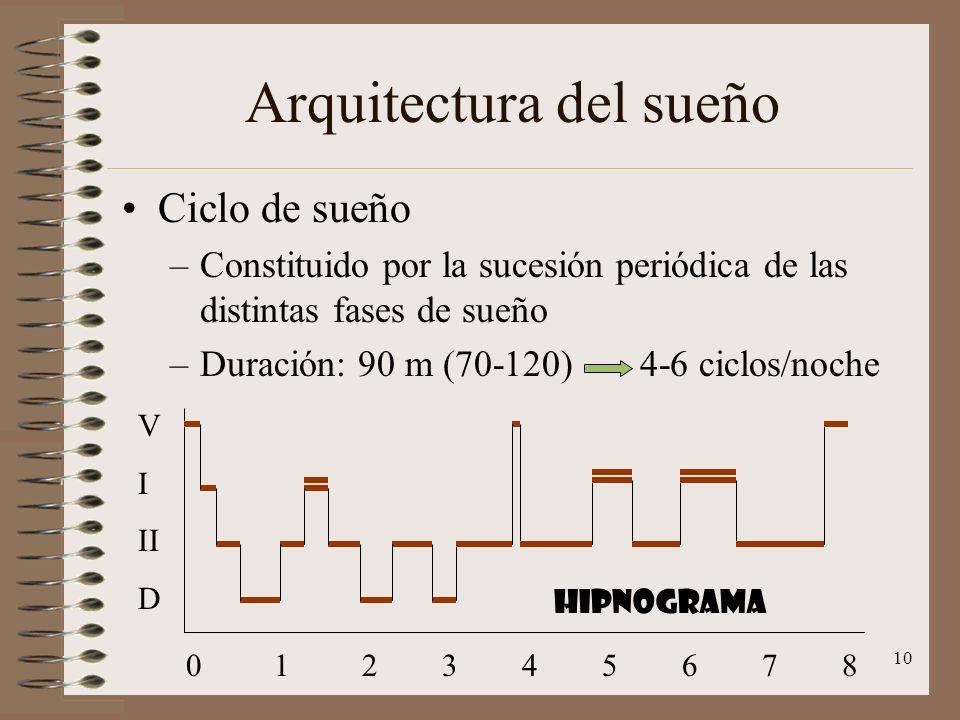 10 Arquitectura del sueño Ciclo de sueño –Constituido por la sucesión periódica de las distintas fases de sueño –Duración: 90 m (70-120) 4-6 ciclos/no
