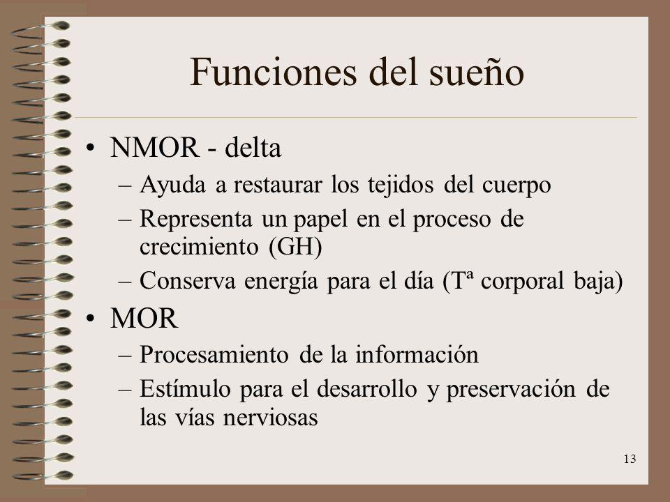 13 Funciones del sueño NMOR - delta –Ayuda a restaurar los tejidos del cuerpo –Representa un papel en el proceso de crecimiento (GH) –Conserva energía