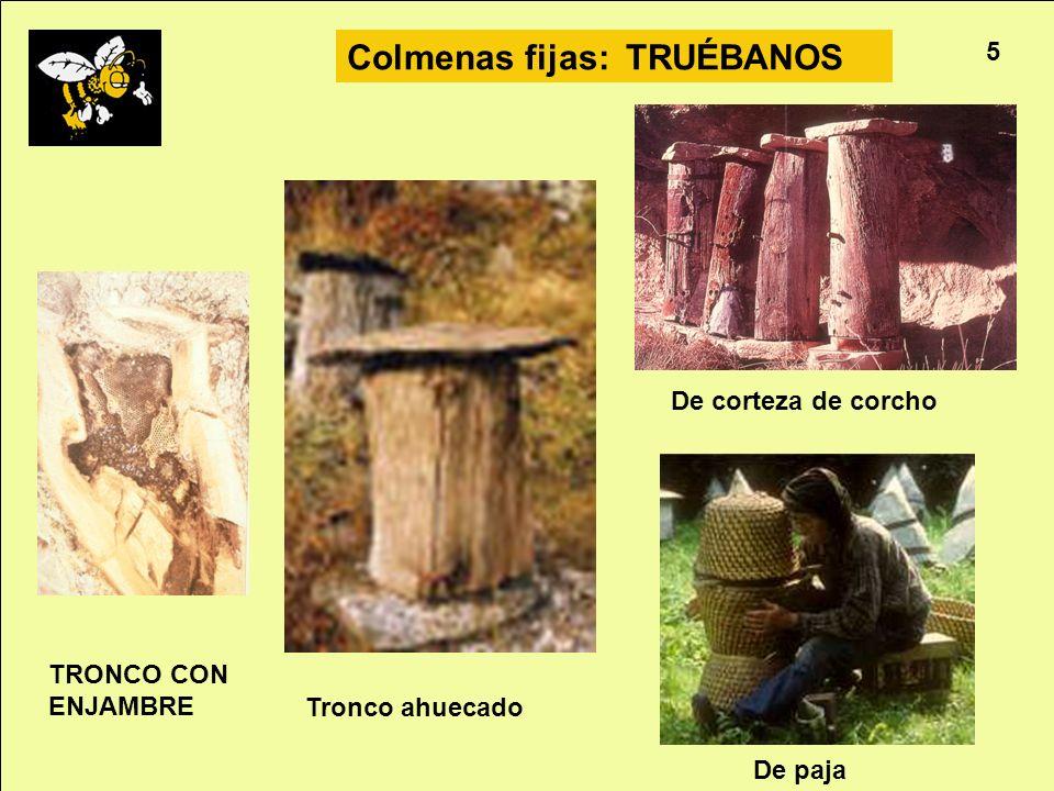Apicultura 5 Colmenas fijas: TRUÉBANOS TRONCO CON ENJAMBRE De paja Tronco ahuecado De corteza de corcho