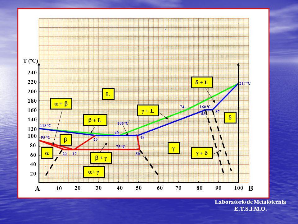 100 200 20 10 2030405060708090100 AB 40 60 80 120 140 160 180 220 240 T (ºC) T t TLTL TSTS A L L + + + Laboratorio de Metalotecnia E.T.S.I.M.O.