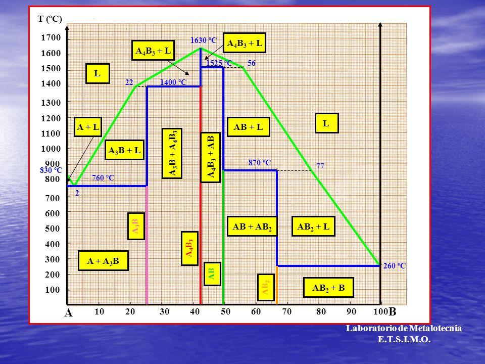 A3BA3B A4B3A4B3 AB AB 2 L L 102030405060708090 100 A B 200 300 400 500 600 700 800 900 1000 1100 1200 1300 1400 1500 1600 1700 T (ºC) 760 ºC 1400 ºC 1630 ºC 1525 ºC 870 ºC 260 ºC 22 2 56 77 L AB + L AB + AB 2 T t Laboratorio de Metalotecnia E.T.S.I.M.O.