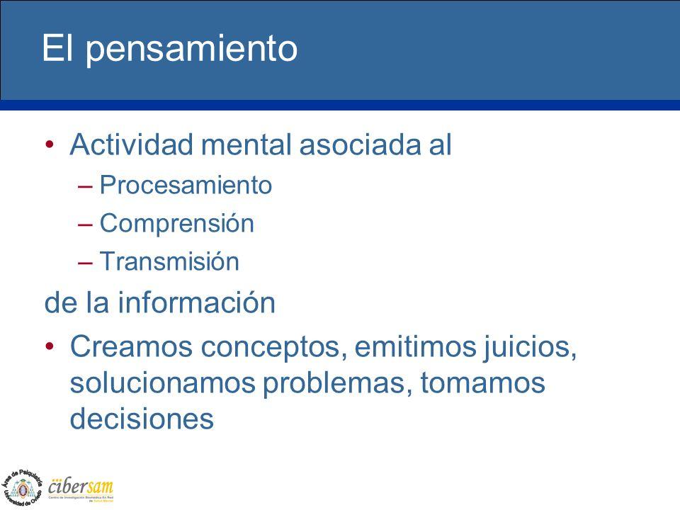 El pensamiento Actividad mental asociada al –Procesamiento –Comprensión –Transmisión de la información Creamos conceptos, emitimos juicios, solucionam