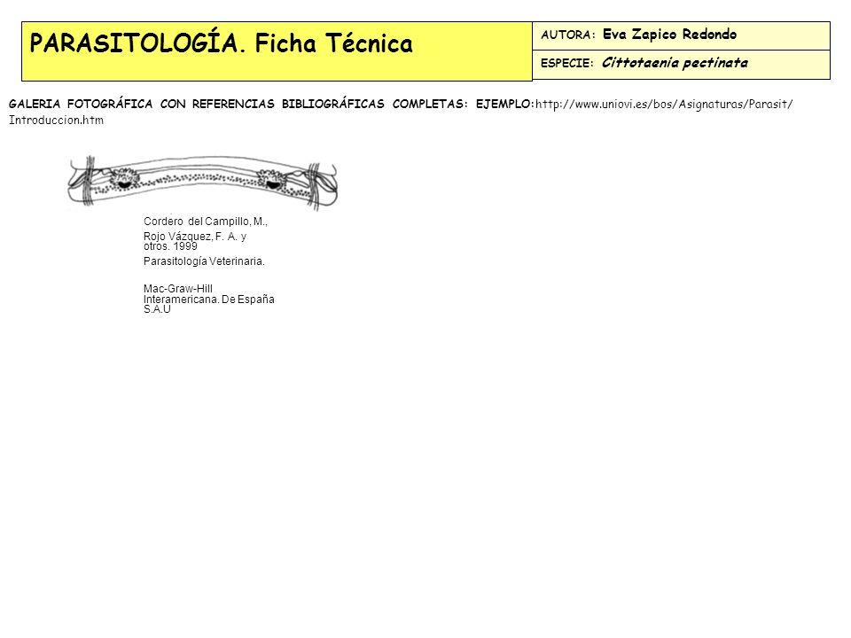 PARASITOLOGÍA.Ficha Técnica FILO: Nematodos. CLASE: Rhabditae.