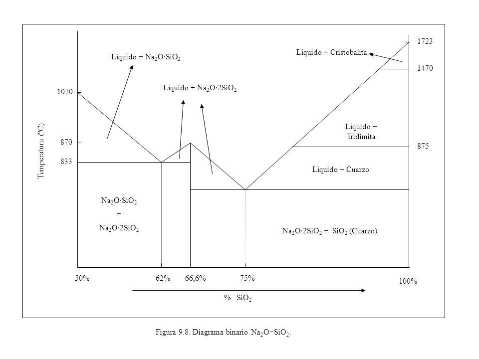Figura 9.14.