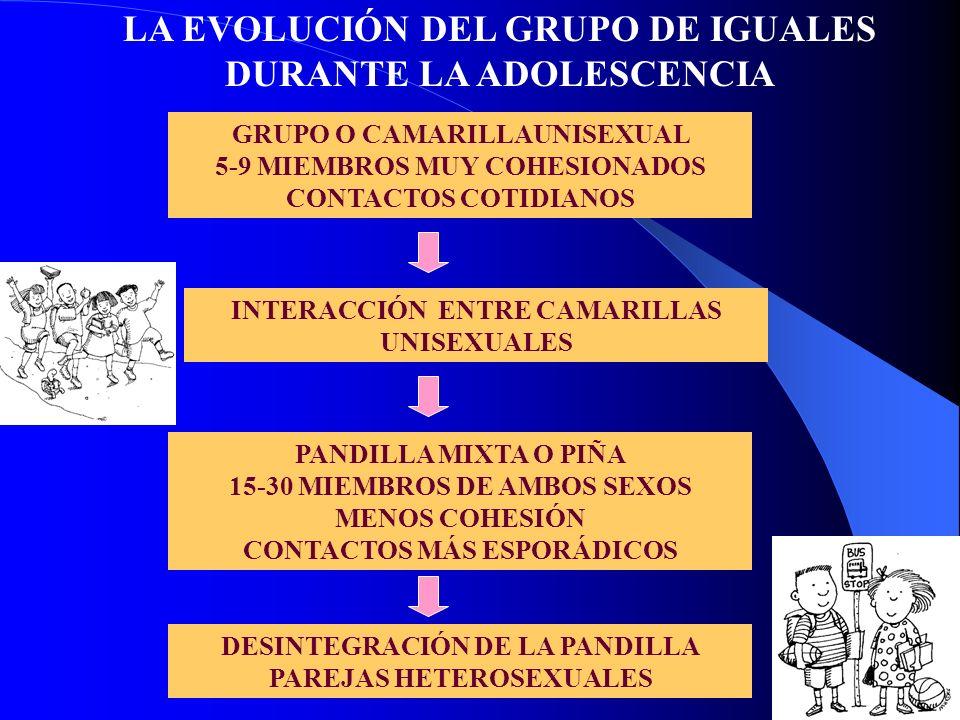 GRUPO O CAMARILLAUNISEXUAL 5-9 MIEMBROS MUY COHESIONADOS CONTACTOS COTIDIANOS INTERACCIÓN ENTRE CAMARILLAS UNISEXUALES PANDILLA MIXTA O PIÑA 15-30 MIE