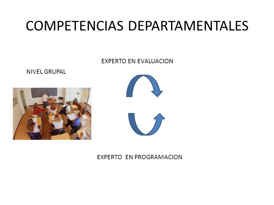 COMPETENCIAS DEPARTAMENTALES EXPERTO EN PROGRAMACION NIVEL GRUPAL EXPERTO EN EVALUACION