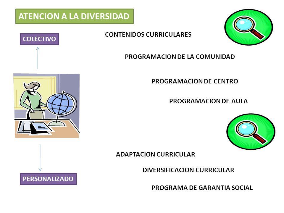 ATENCION A LA DIVERSIDAD CONTENIDOS CURRICULARES PROGRAMACION DE LA COMUNIDAD PROGRAMACION DE CENTRO PROGRAMACION DE AULA ADAPTACION CURRICULAR DIVERS