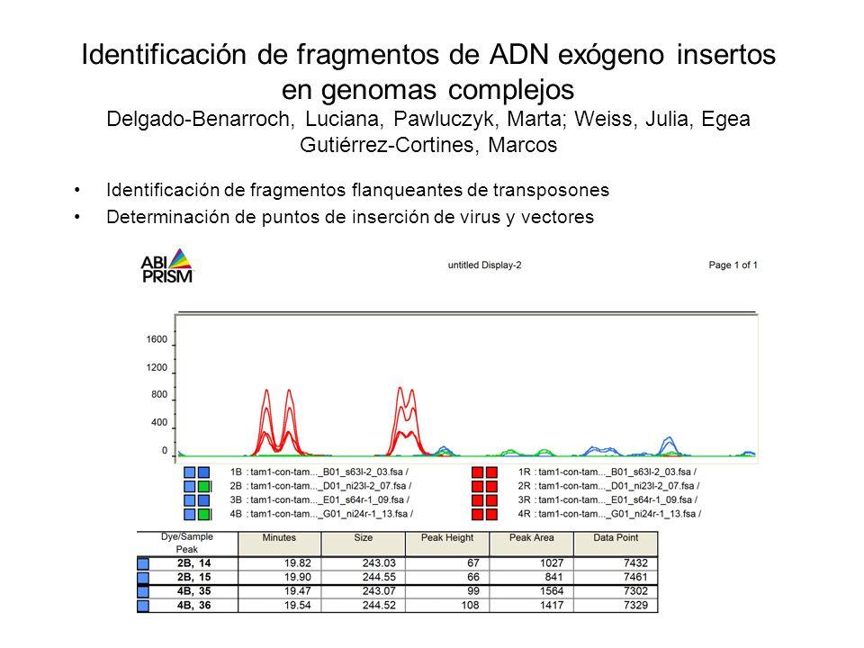 Identificación de fragmentos de ADN exógeno insertos en genomas complejos Delgado-Benarroch, Luciana, Pawluczyk, Marta; Weiss, Julia, Egea Gutiérrez-C