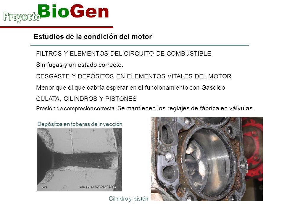 Estudios de la condición del motor FILTROS Y ELEMENTOS DEL CIRCUITO DE COMBUSTIBLE Sin fugas y un estado correcto.