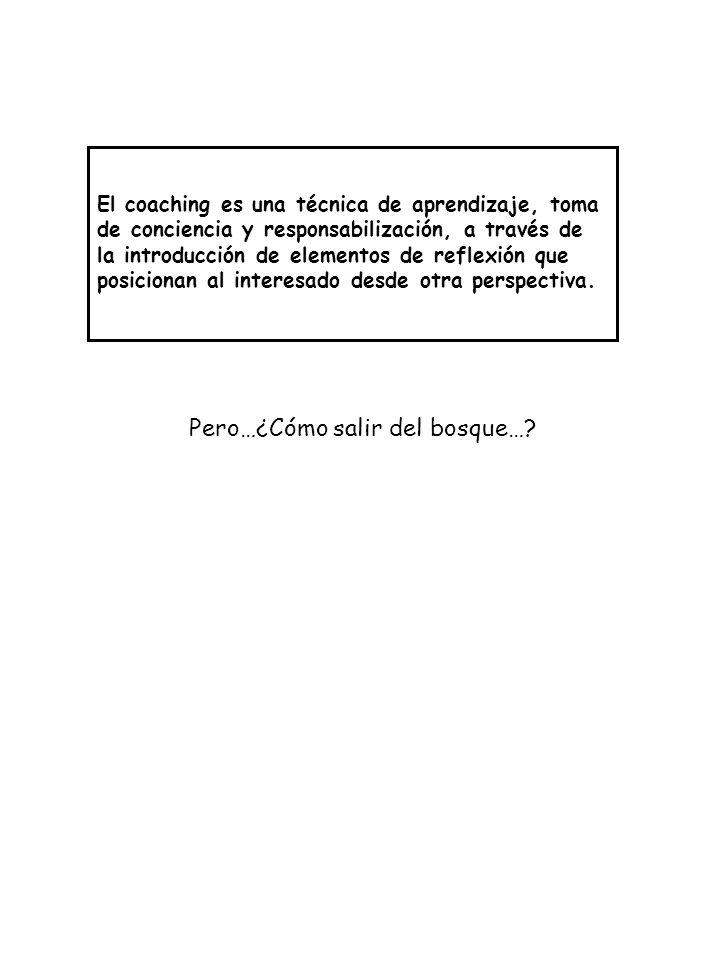 Pero…¿Cómo salir del bosque…? El coaching es una técnica de aprendizaje, toma de conciencia y responsabilización, a través de la introducción de eleme