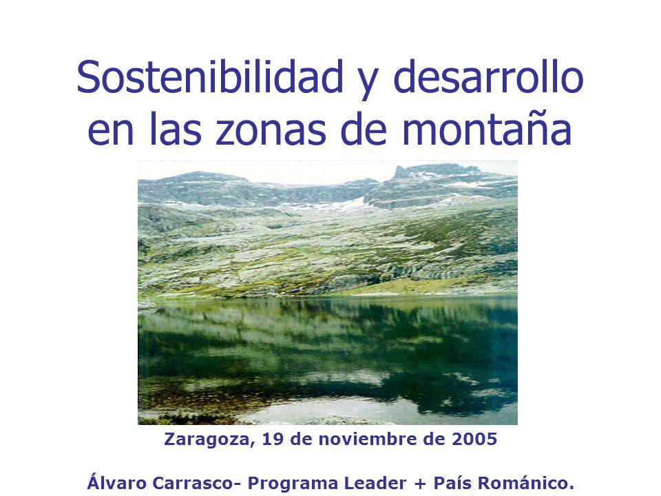 Sostenibilidad y desarrollo en las zonas de montaña Zaragoza, 19 de noviembre de 2005 Álvaro Carrasco- Programa Leader + País Románico.