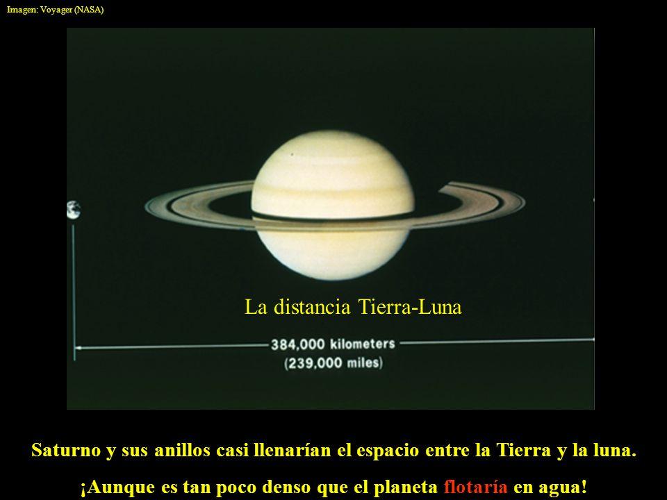 Saturno y sus anillos casi llenarían el espacio entre la Tierra y la luna. ¡Aunque es tan poco denso que el planeta flotaría en agua! La distancia Tie