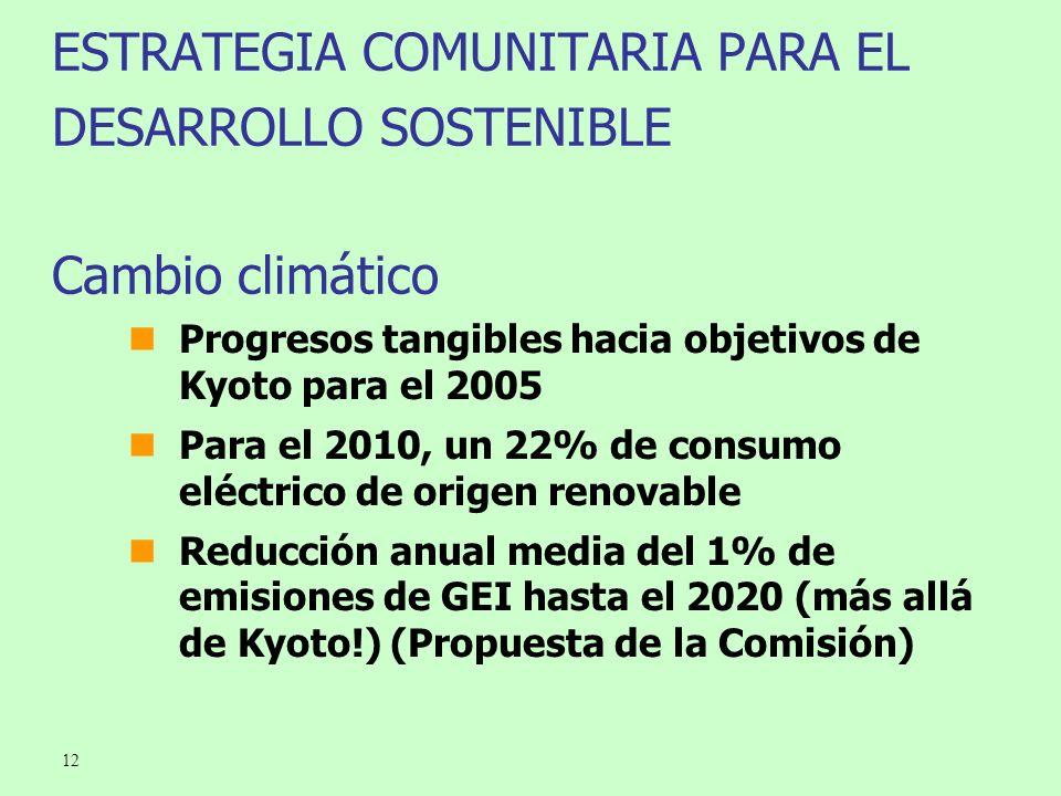 12 ESTRATEGIA COMUNITARIA PARA EL DESARROLLO SOSTENIBLE Cambio climático Progresos tangibles hacia objetivos de Kyoto para el 2005 Para el 2010, un 22