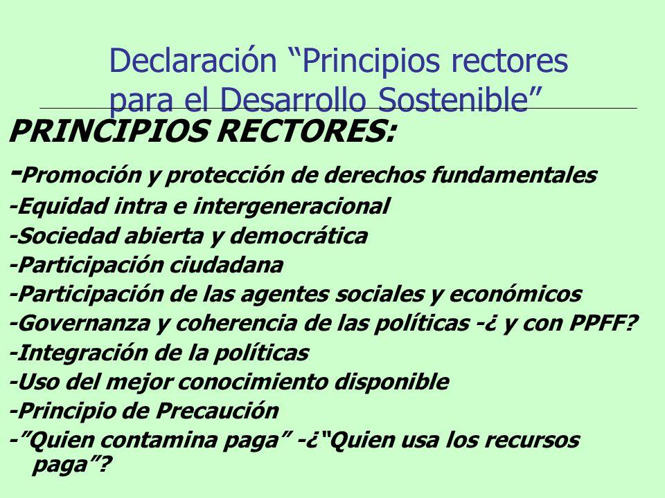 Declaración Principios rectores para el Desarrollo Sostenible PRINCIPIOS RECTORES: - Promoción y protección de derechos fundamentales -Equidad intra e