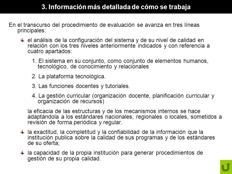 3. Información más detallada de cómo se trabaja En el transcurso del procedimiento de evaluación se avanza en tres líneas principales: el análisis de