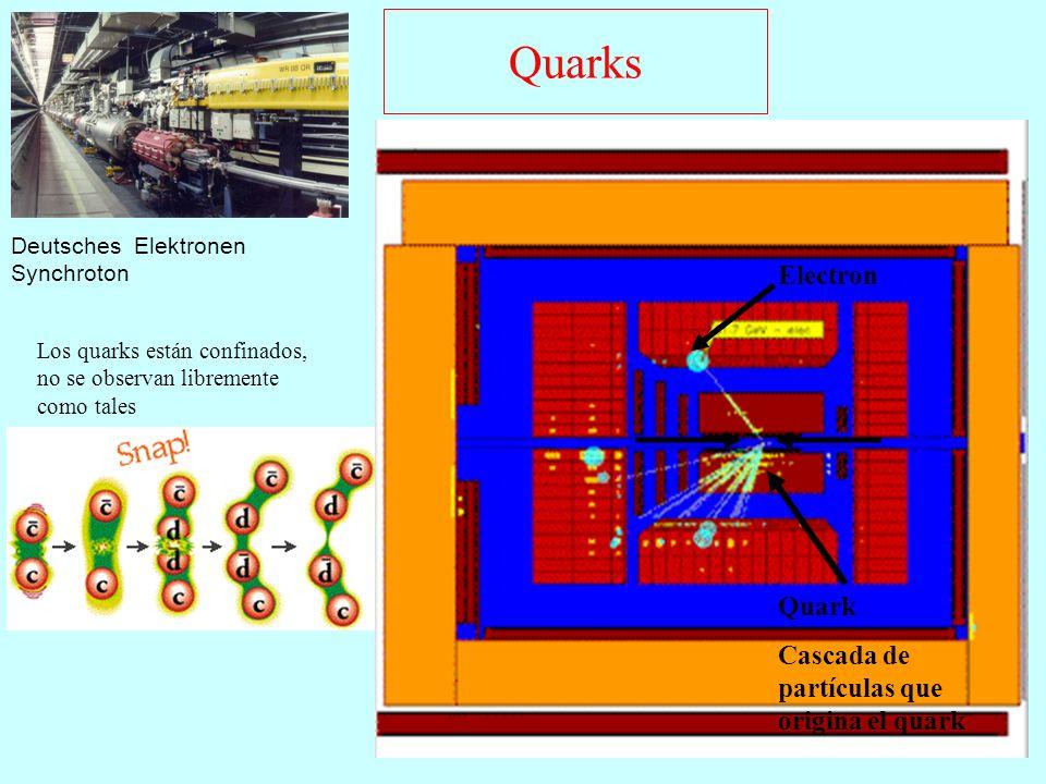 Quarks Deutsches Elektronen Synchroton Electron Quark Cascada de partículas que origina el quark Los quarks están confinados, no se observan libremente como tales