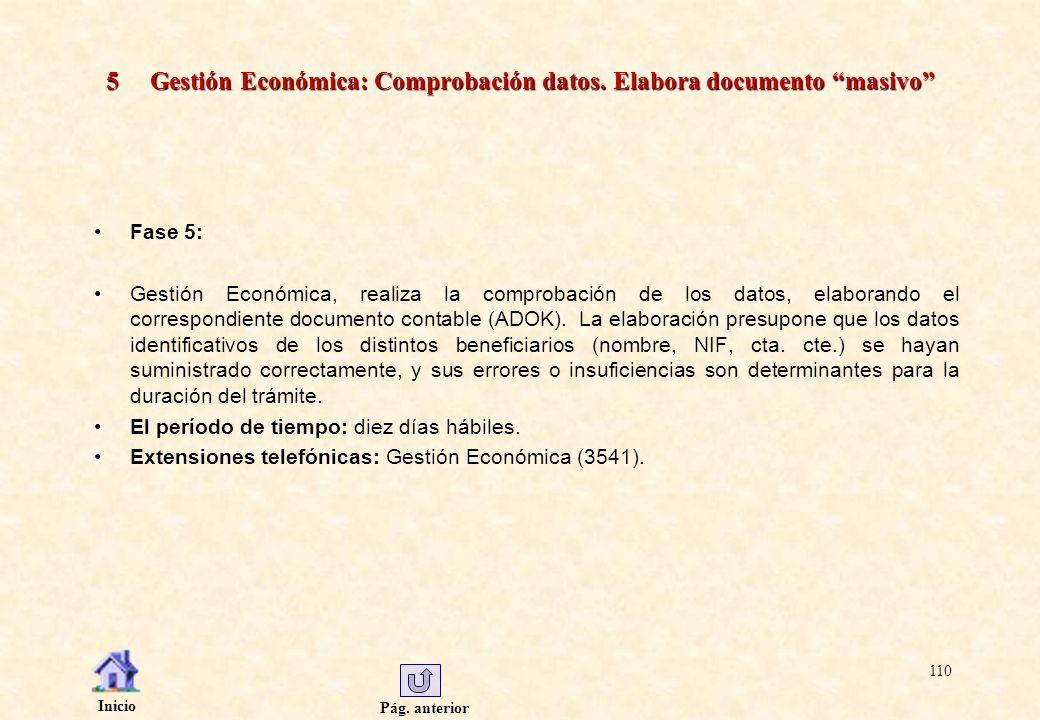 Pág. anterior Inicio 110 5 Gestión Económica: Comprobación datos. Elabora documento masivo Fase 5: Gestión Económica, realiza la comprobación de los d