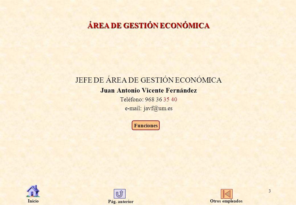 Pág. anterior Inicio 3 ÁREA DE GESTIÓN ECONÓMICA JEFE DE ÁREA DE GESTIÓN ECONÓMICA Juan Antonio Vicente Fernández Teléfono: 968 36 35 40 e-mail: javf@