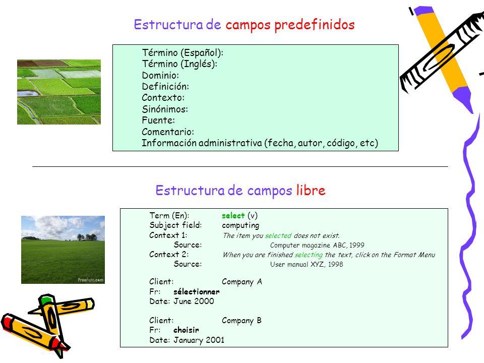 4 Estructura de campos predefinidos Término (Español): Término (Inglés): Dominio: Definición: Contexto: Sinónimos: Fuente: Comentario: Información adm