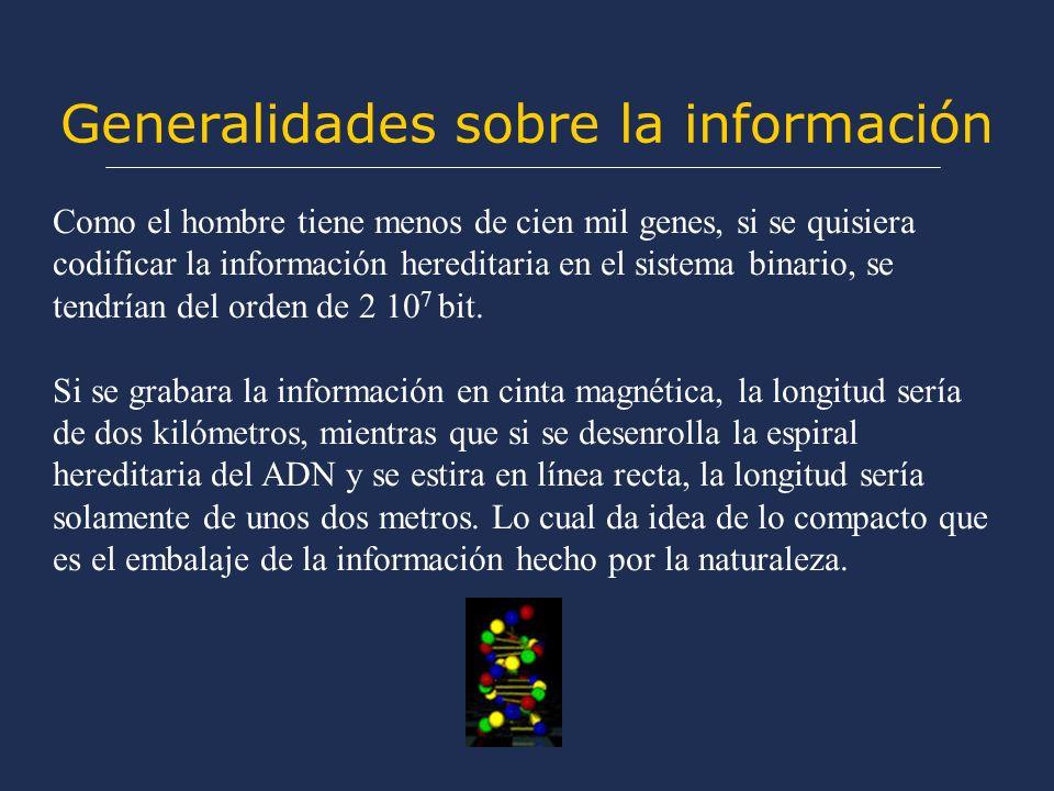 Generalidades sobre la información Como el hombre tiene menos de cien mil genes, si se quisiera codificar la información hereditaria en el sistema binario, se tendrían del orden de 2 10 7 bit.