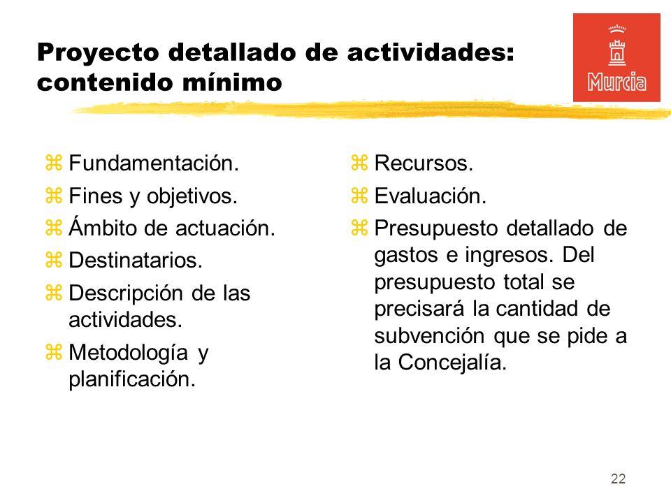 22 Proyecto detallado de actividades: contenido mínimo Fundamentación.
