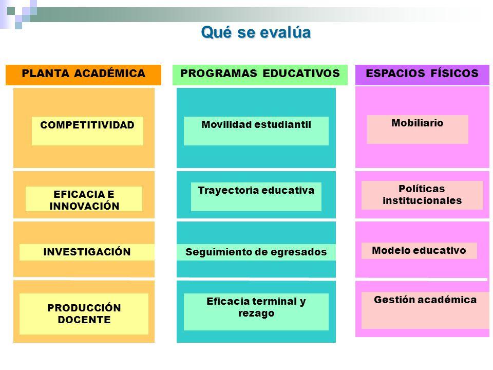 PLANTA ACADÉMICAPROGRAMAS EDUCATIVOSESPACIOS FÍSICOS COMPETITIVIDAD EFICACIA E INNOVACIÓN INVESTIGACIÓN PRODUCCIÓN DOCENTE Movilidad estudiantil Trayectoria educativa Seguimiento de egresados Eficacia terminal y rezago Mobiliario Políticas institucionales Modelo educativo Gestión académica Qué se evalúa