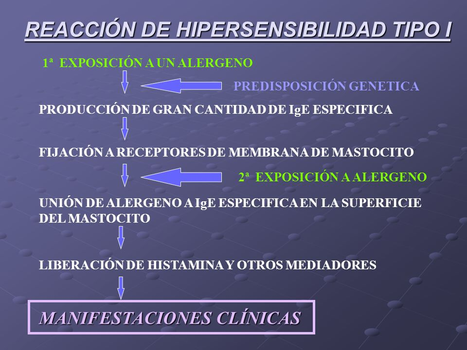 Reacciones mediadas por IgE Anticuerpos (inmunoglubulinas), proteínas producidas linfocitos B en respuesta a la presencia de alergenos Epítopo, porció