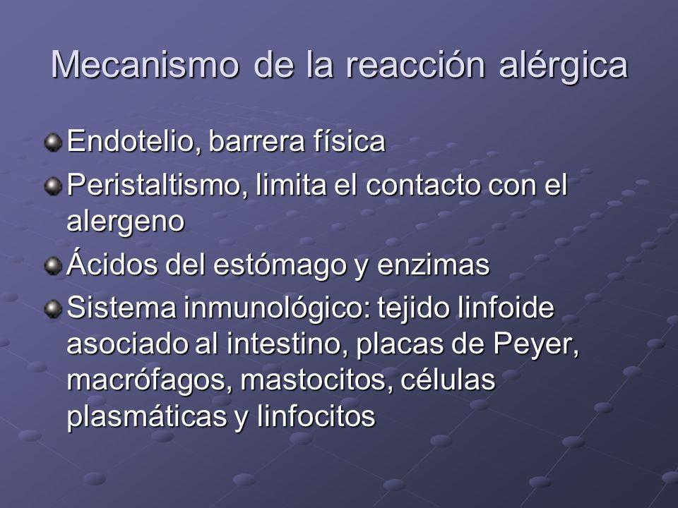 Mecanismo de la reacción alérgica Alergeno = sustancia extraña al organismo capaz de provocar una reacción alérgica (localmente o sistémicamente) Aler