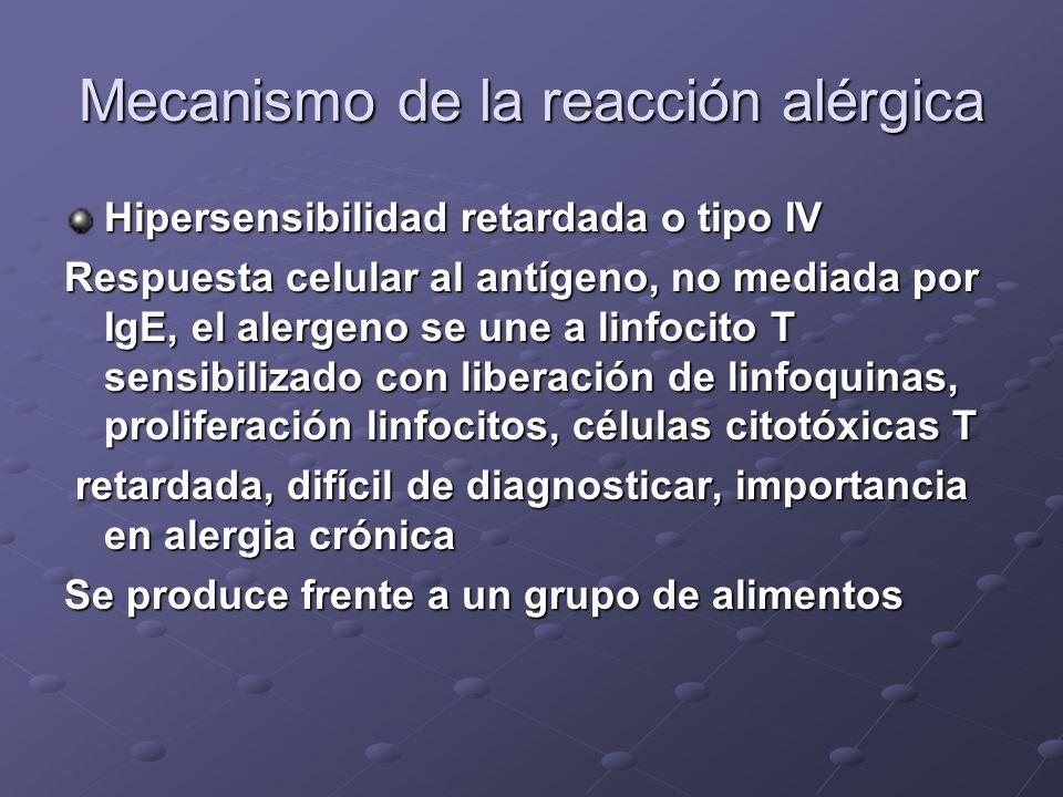 Mecanismo de la reacción alérgica Hipersensibilidad tipo I o inmediata Mediada por IgE, respuesta humoral al antígeno, liberación de sustancias activa