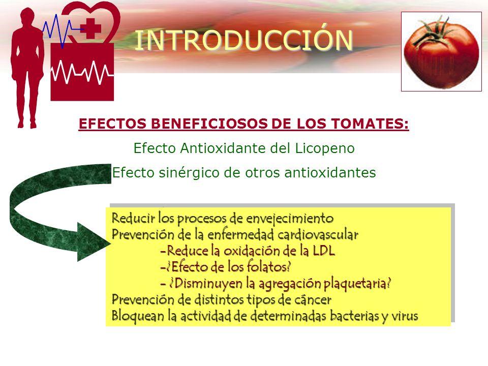 94-95%AGUA Composición química de los tomates 5-6% ST Hidratos de Carbono= 4% Hidratos de Carbono= 4% Proteínas= 0.5-1% Proteínas= 0.5-1% Lípidos= tra