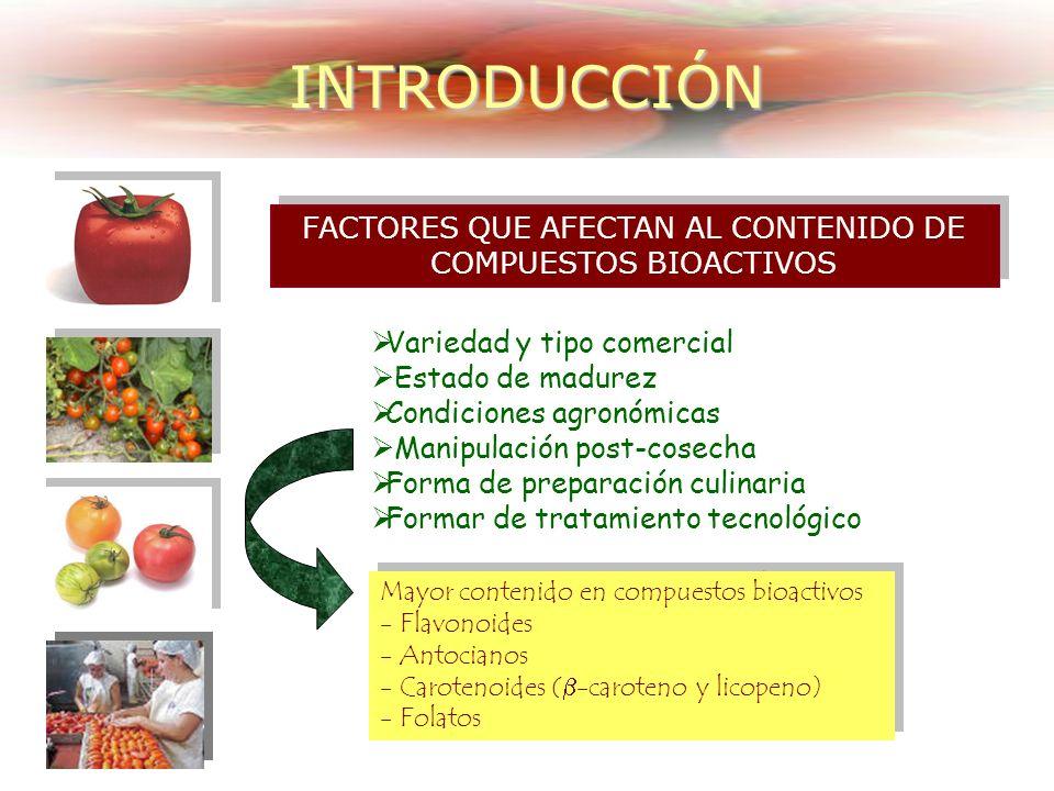 EFECTOS BENEFICIOSOS DE LOS TOMATES: Efecto Antioxidante del Licopeno Efecto sinérgico de otros antioxidantes INTRODUCCIÓN Reducir los procesos de env