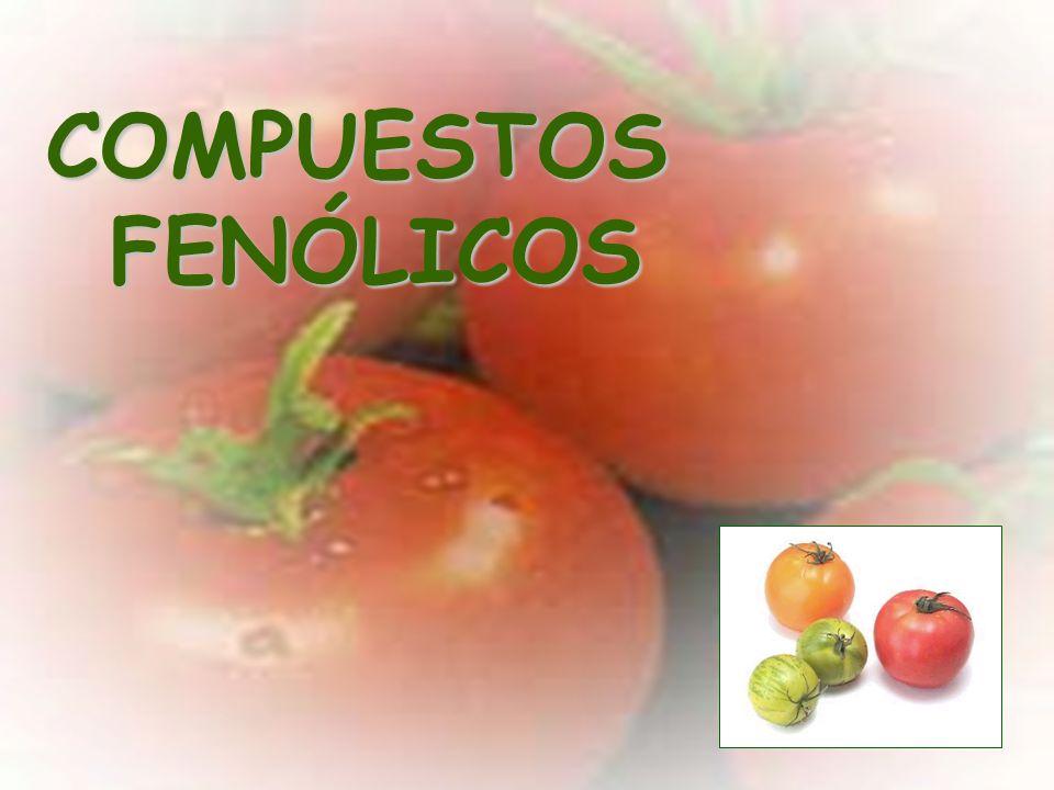 TomatesFrescos3.1-7.4130 g4.03-10.06 TomatesEnlatados 11.21 125 g 14.01 Zumo de tomateProcesado7.83240 ml19.58 Sopa de tomateConcentrad o 3.99 245 g 9