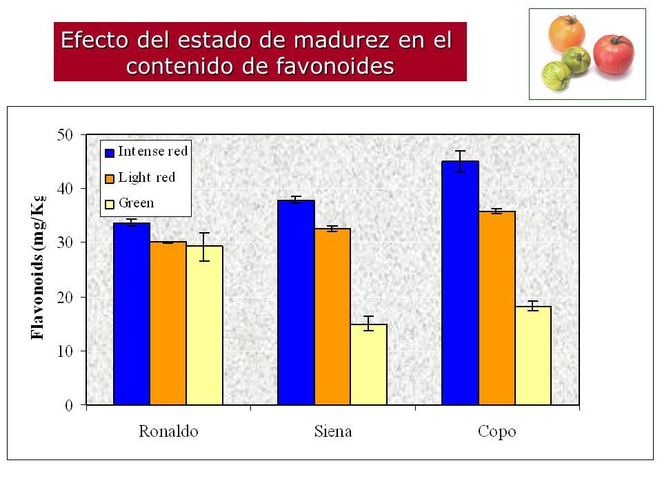 Efecto del estado de madurez en el contenido de compuestos fenólicos totales