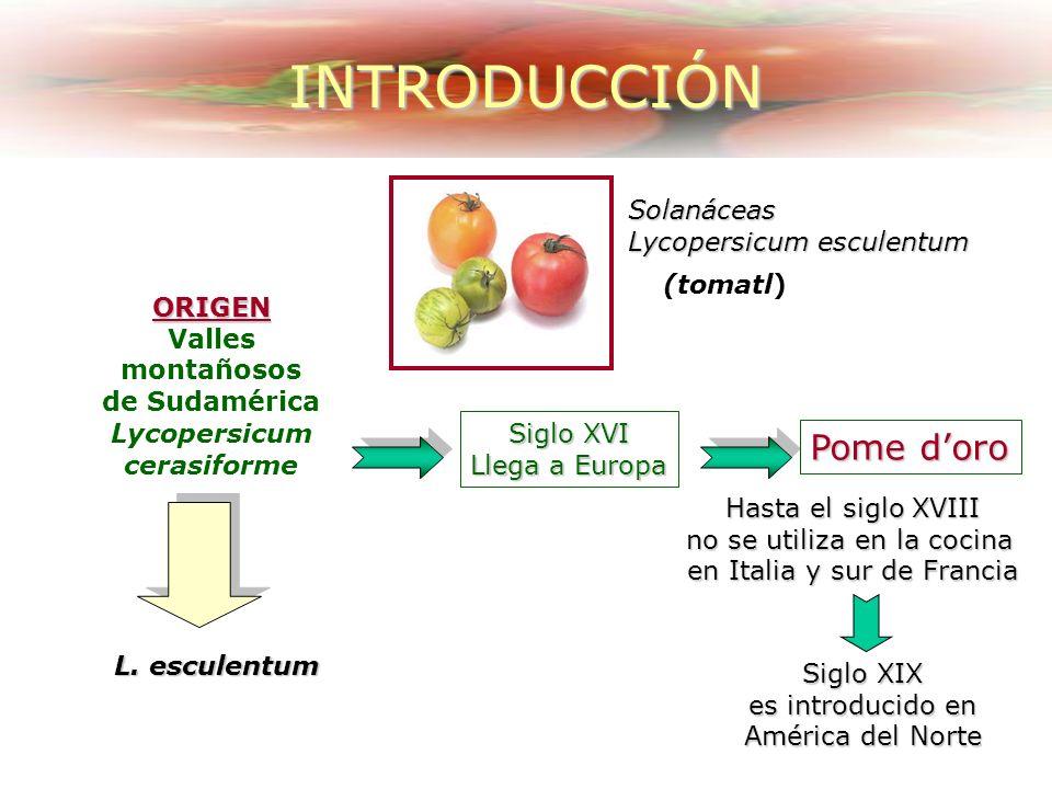Efecto del estado de madurez en el contenido de Vitamina C
