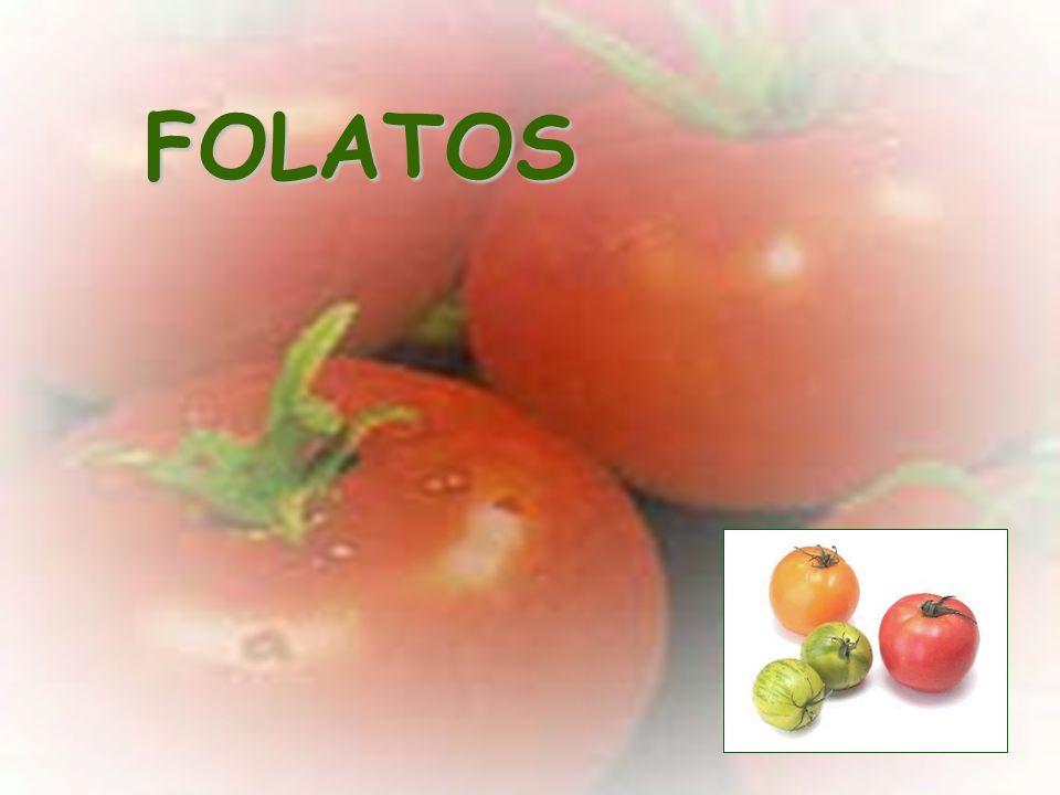Efecto del tratamiento térmico en el contenido de compuestos fenólicos en la pulpa de tomate